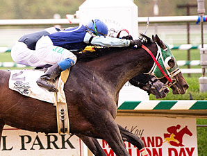 Call of a Lion wins the 2011 Maryland Million Distaff Starter.