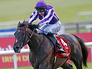 Camelot wins the 2012 Irish Derby.