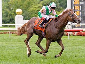 Cape Blanco wins the 2011 Arlington Million.