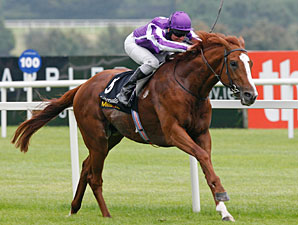 Cape Blanco wins the 2010 Champion Stakes.