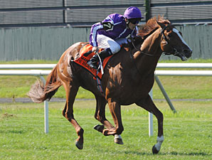 Cape Blanco wins the 2011 Man o' War.