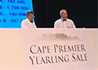 Cape Thoroughbred Sale Preview - Adrian Todd