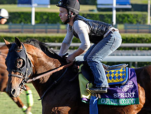 Capital Account at Santa Anita 10/29/2012.