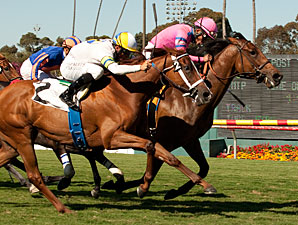 Capital Plan wins the Beverly Hills Handicap.