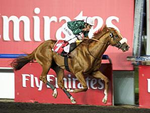 Capponi wins the 2012 Al Maktoum Challenge-Round 3.