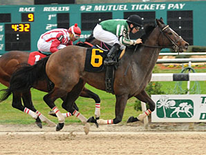 Capt. Candyman Can wins the 2011 Super Stakes.