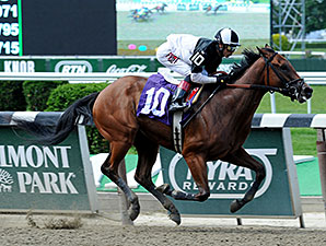 Captain Serious wins the 2014 Mike Lee Stakes.