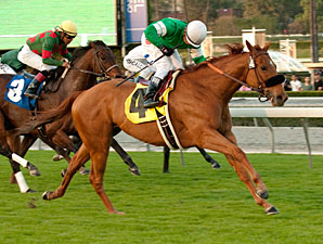 Caracrotado in the 2012 Daytona Stakes.