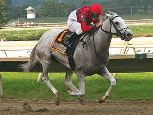 Careless Jewel #1 with Robert Landry riding wins the $750,000 Fitz Dixon Cotillion Stakes (Grade II) at Philadelphia Park