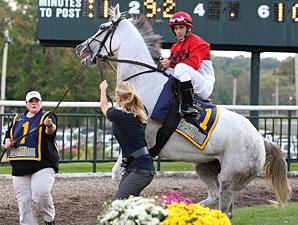 Careless Jewel before the 2009 Fitz Dixon Cotillion Stakes