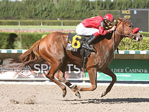 Carphonic wins the 2009 Joe O'Farrell Juvenile Fillies.