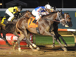 Carve wins the 2014 Prairie Meadows Cornhusker.