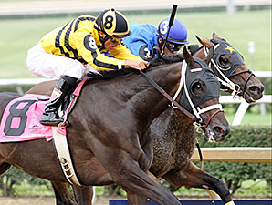 Carve wins the West Virginia Governor's Stakes.