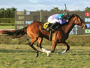 Casablanca Smile wins the 2011 La Prevoyante.