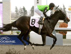 Cascading wins the 2009 Glorious Song.