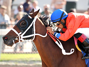 Cash Rules wins the 2012 Carl G. Rose Handicap.
