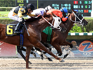 Cash Rules wins the 2012 Darn That Alarm Handicap.