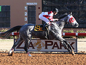 Cassatt wins the 2014 Zia Park Oaks.
