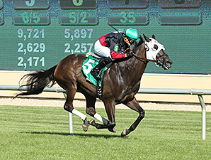 Castletown, New Track Record at Canterbury, July 3, 2014.