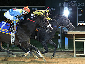 Cat Thats Grey wins the 2014 West Virginia Division of Tourism Breeders' Classic.