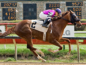 Catalina Way wins the 2011 Peach Of It Handicap.