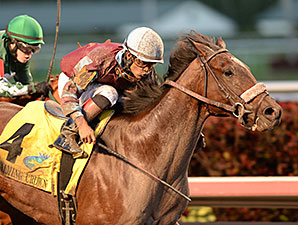 Catholic Cowboy wins the 2014 Jewel Stakes.