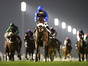 Cavalryman wins the 2014 Nad al Sheba Trophy.