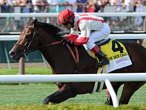 Central Banker wins the 2013 Quick Call Stakes.