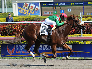 Cerro - Allowance Win, January 26, 2013.