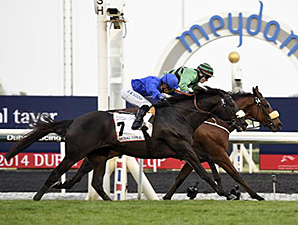Certerach wins the Dubai Gold Cup March 29.