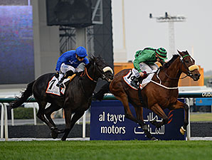 Certerach wins the 2014 Dubai Gold Cup.