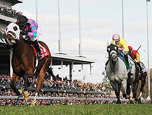 Chamberlain Bridge in the Breeders Cup Turf Sprint.