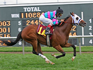 Chamberlain Bridge #1A with John Velazquez riding wins the $250,000 Turf Monster Handicap.
