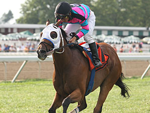Chamberlain Bridge wins the 2012 My Frenchman Stakes.