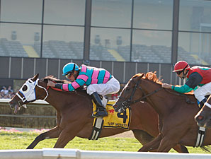 Chamberlain Bridge wins the 2010 Turf Monster.