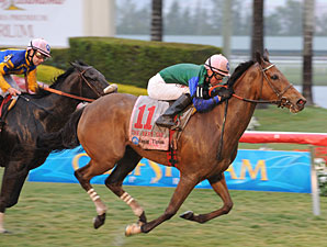 Changing Skies wins the 2010 The Very One.