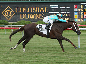 Channel Lady wins the 2013 All Along Stakes.