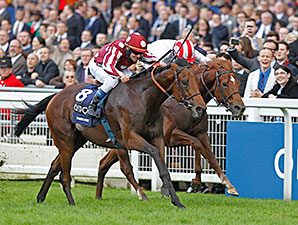 Charm Spirit wins the 2014 Queen Elizabeth II Stakes.