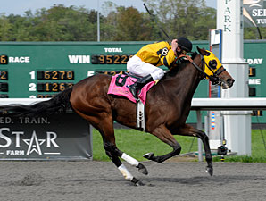 Charming Vixen wins the 2011 Kentucky Cup Juvenile Fillies.