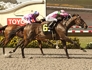Charm the Maker wins the Adoratino Stakes.