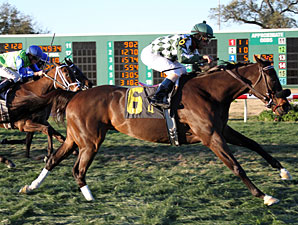 Cherokee Queen wins the 2012 Marie G. Krantz Memorial Handicap.