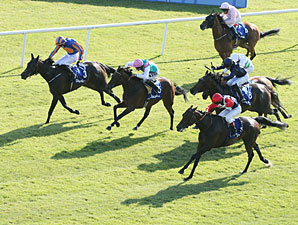Chicquita wins the 2013 Irish Oaks.