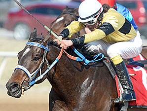Chifforobe wins the 2014 Clem McSpadden Memorial Route 66 Stakes.