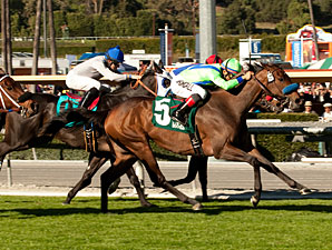 Chokecherymary wins the 2012 Valentine Dancer.