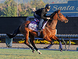 Chriselliam - 2013 Breeders' Cup, October 31, 2013.