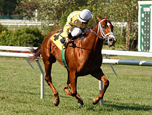 Christiesborntorun Monmouth Allowance, August 5, 2011.