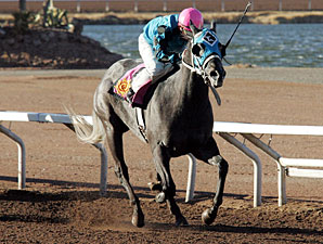 Chuchuluco wins the 2010 Pepsi Cola Stakes.