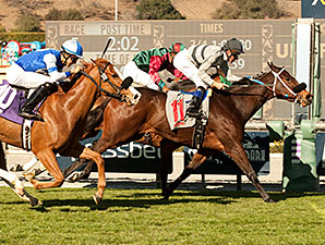 Ciao Bella Luna wins the 2014 Sunshine Millions Filly and Mare Turf Sprint Stakes.