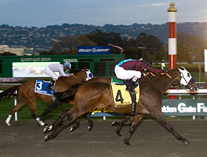 Cigar Man wins the 2010 All American.