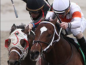 Cinco Charlie wins the 2014 Sugar Bowl Stakes.
